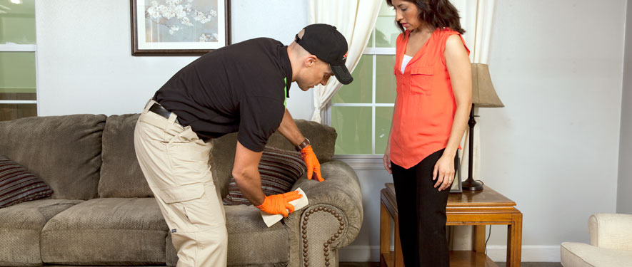Niles, MI carpet upholstery cleaning