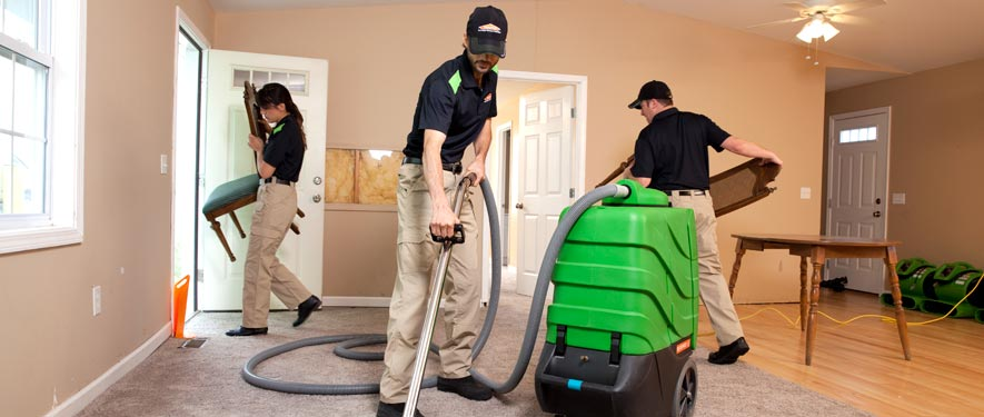 Niles, MI cleaning services